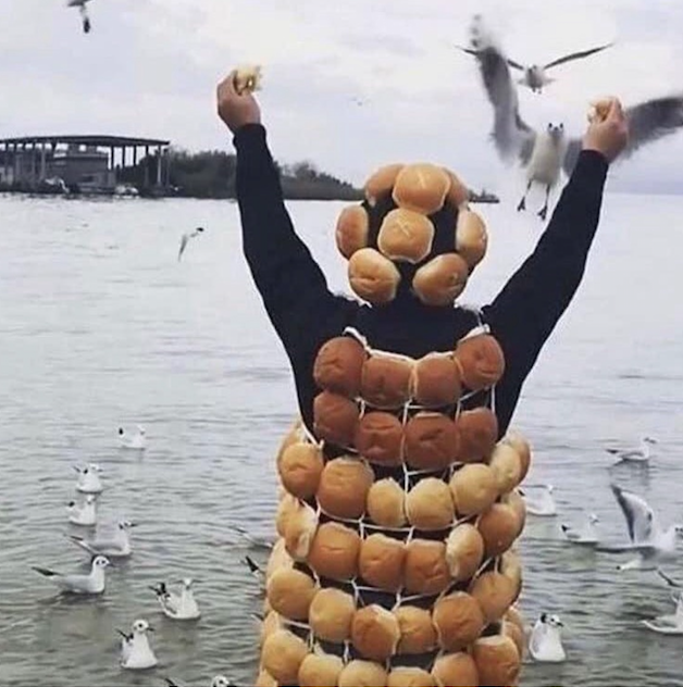 A person in black with their arms outstretched is wearing some kind of bread outfit whereby bread buns are held on a grid and it is worn on the body like a vest. They also have bread secured to something on their head too. They are standing in front of water and seagulls and flying in to greet this bread-adorned person.