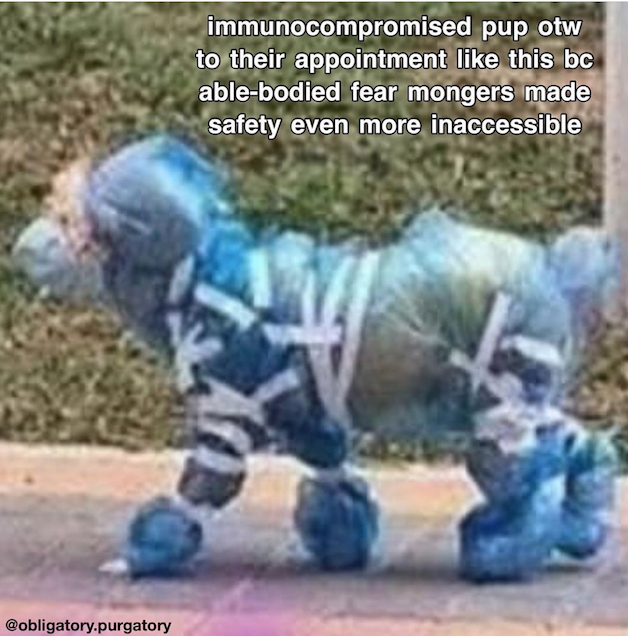 "This is a meme featuring a dog walking by who seems to be covered in blue plastic and medical tape. The text reads: ""immunocompromised pup on the way to their appointment like this because abled-bodied fear mongers made safety even more inaccessible."""