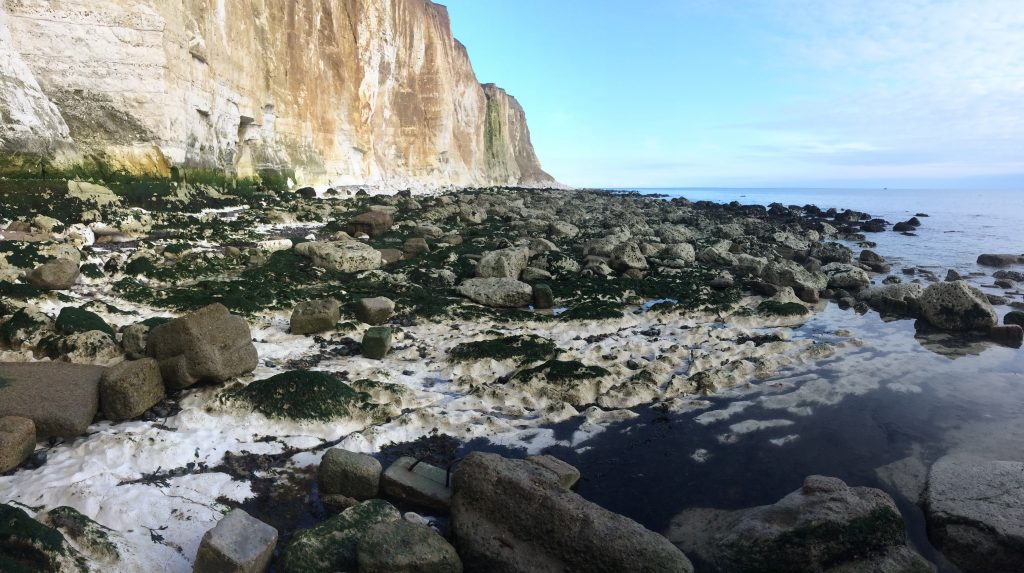 A colour photograph of a rock strewn beach and chalk cliffs. It is a bright day, with a few light clouds stretching out towards the horizon. The sky is a vivid, light blue. The sea is crystal clear. It looks cold. Seaweed, a deep, dark green, cover chalk rocks which are densely packed across ground. The rocks have fallen from the high chalk cliffs that form a wall on the right hand side of the picture. The cliffs are a wide range of colours; greys, creamy whites, yellows, browns, ochre and dark greens. It looks wild, a bit dangerous but beautiful.