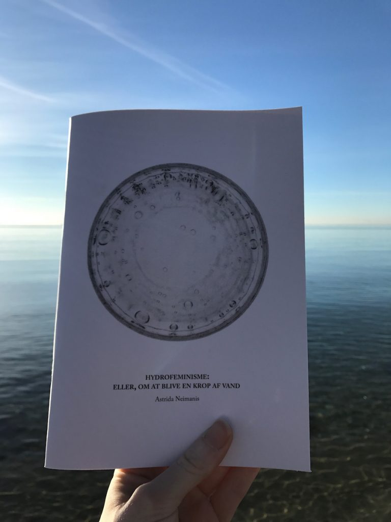 white hand holds a zine in front of a sea in front of the horizon. zine says HYDROFEMINISME: ELLER, OM AT BLIVE EN KROP AF VAND