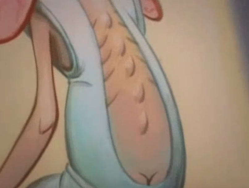 A screenshot from the cartoon The Ren and Stimpy Show. Ren is a small and hairless chihuahua dog with beige skin, pink eyes and floppy long pink ears. Stimpy is red/orange Manx cat with a white tummy and hands, wth a round blue nose and a pink tongue often hanging out of his mouth. In this screenshot we see Ren's back, he is wearing a backless white hospital style gown with his protruding spine and bum crack showing, he is slumped as though he is fed up and has no energy.