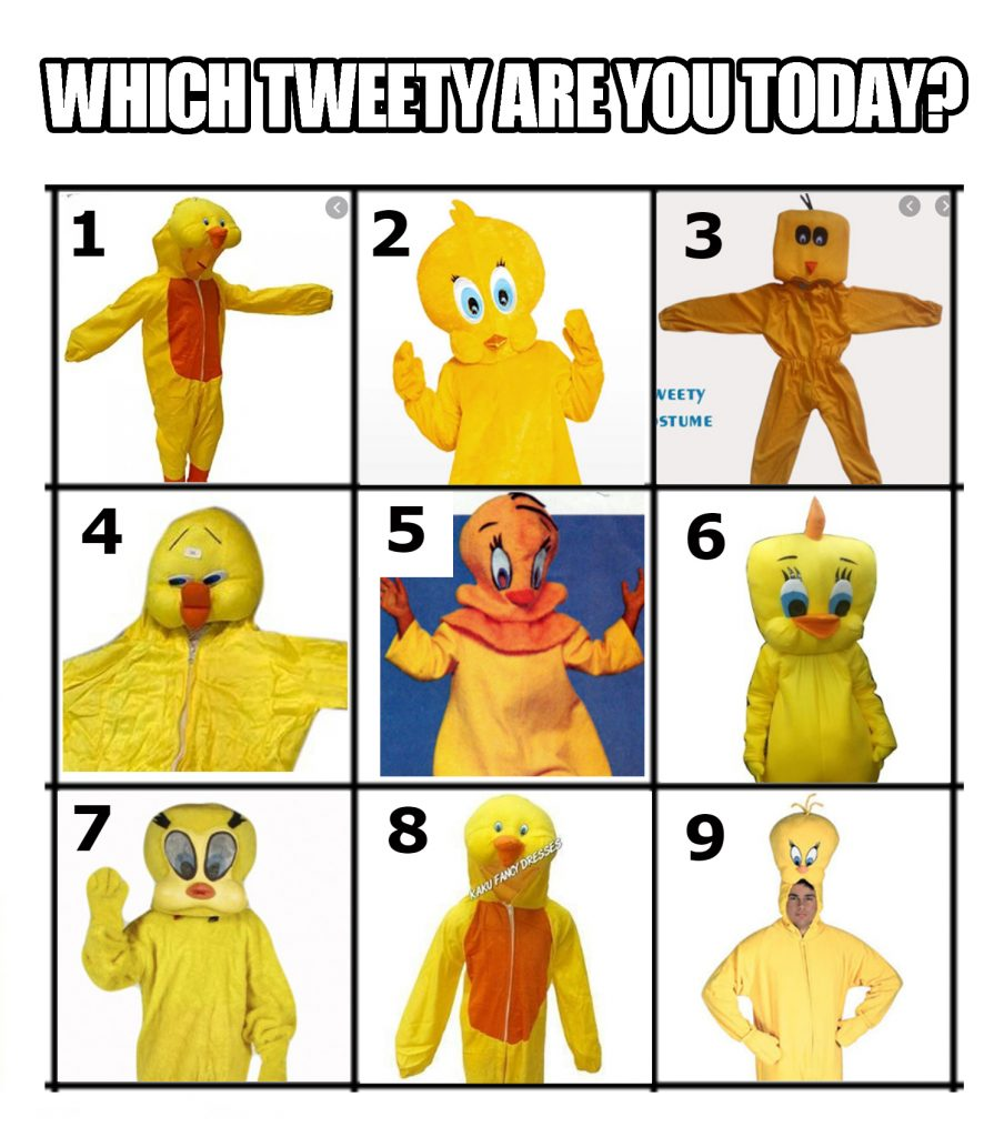 A meme with a grid presenting nine different unofficial tweety costumes. At the top it says 'which tweety are you today?' and  I would describe the costumes as follows: 1. Floating walking tweety with an elongated head and smiley face. 2. A flat faced tweety with a surprised look and hands raised. 3. a box head tweety 4. A squishy faced side eyes tweety. 5. A creepy slightly angry tweety with a comb over. 6. A cute bulbus unassuming tweety looking down like they are a bit embarrassed. 7. an intense but also somehow expressionless tweety waving one hand. 8 a smiley tweety with a long thick neck. 9. a man with a yellow onesie on and the hood is a bulbus slightly angry looking tweety head ontop of his head. He has his hands on his hips.