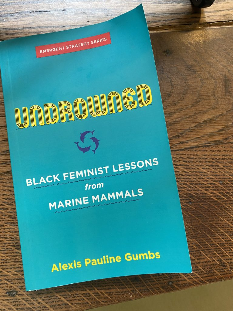 Turquoise Book cover entitled 'Undrowned: Black Feminist Lessons from Marine Mammals' by Alexis Pauline Gumbs